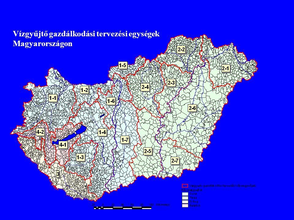 EU szintű munkacsoportok (útmutatók): WG 2.1 Terhelések és hatások elemzése WG 2.2 Erősen módosított víztestek WG 2.3 Szárazföldi felszíni vizek referenciafeltételei WG 2.4 Tengerparti vizek osztályozása WG 2.5 Interkalibráció WG 2.6 Gazdasági elemzés WG 2.7 Monitoring WG 2.8 Felszín alatti vizek értékelése és osztályozása WG 2.9 Vízgyűjtő gazdálkodási tervezés legjobb módszerei WG 3.1 Közös GIS fejlesztése WG 4.1 Kézikönyvek tesztelése kísérleti vízgyűjtőkön