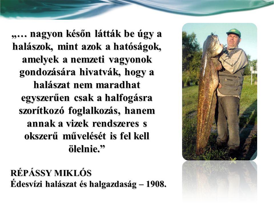 Az első halászati törvény a XIX.század végén (1888.