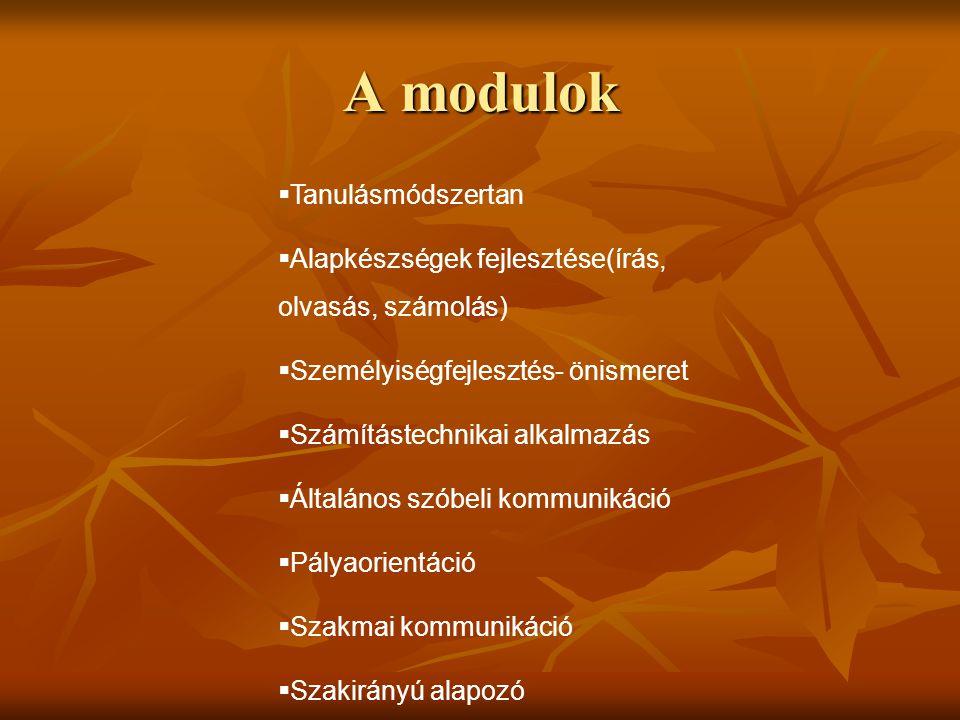 A modulok  Tanulásmódszertan  Alapkészségek fejlesztése(írás, olvasás, számolás)  Személyiségfejlesztés- önismeret  Számítástechnikai alkalmazás  Általános szóbeli kommunikáció  Pályaorientáció  Szakmai kommunikáció  Szakirányú alapozó