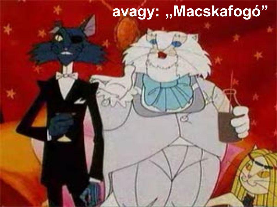 """avagy: """"Macskafogó"""