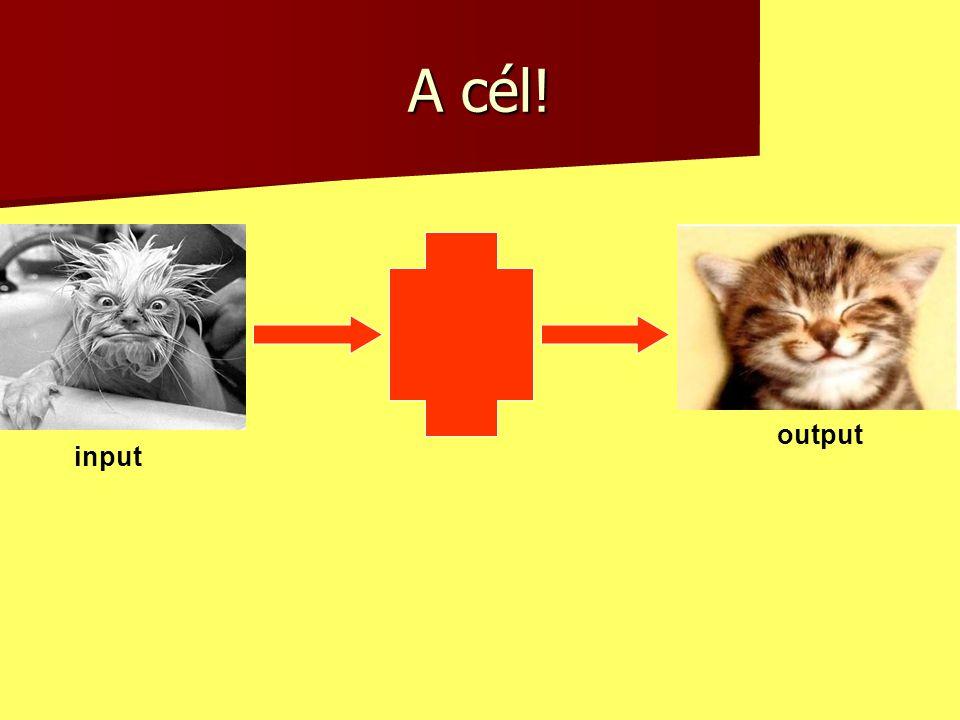 A cél! input output