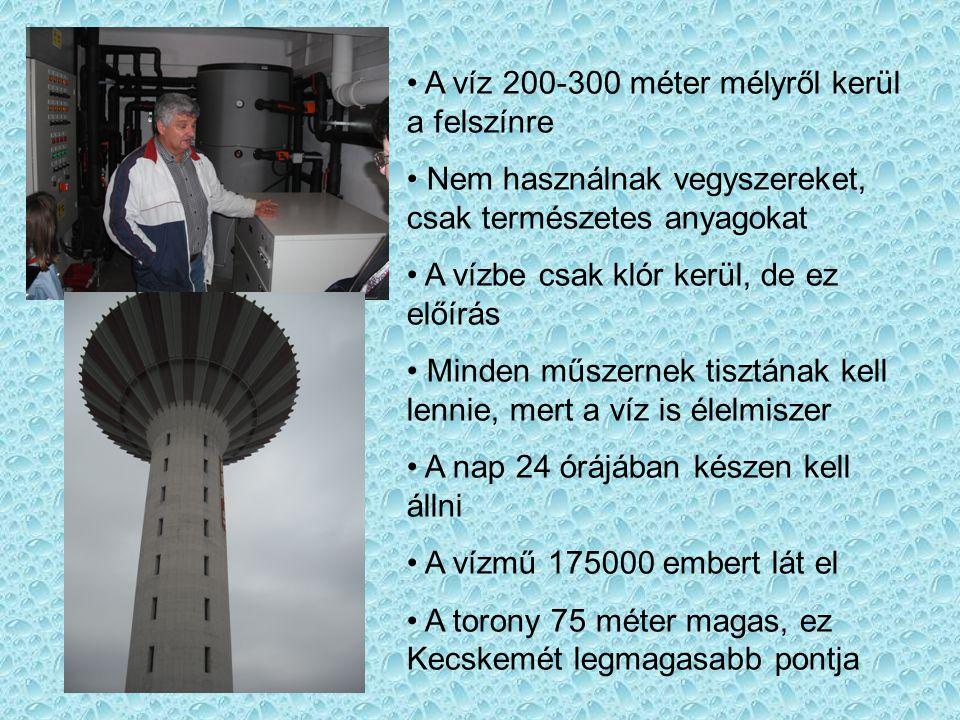 A víz 200-300 méter mélyről kerül a felszínre Nem használnak vegyszereket, csak természetes anyagokat A vízbe csak klór kerül, de ez előírás Minden műszernek tisztának kell lennie, mert a víz is élelmiszer A nap 24 órájában készen kell állni A vízmű 175000 embert lát el A torony 75 méter magas, ez Kecskemét legmagasabb pontja
