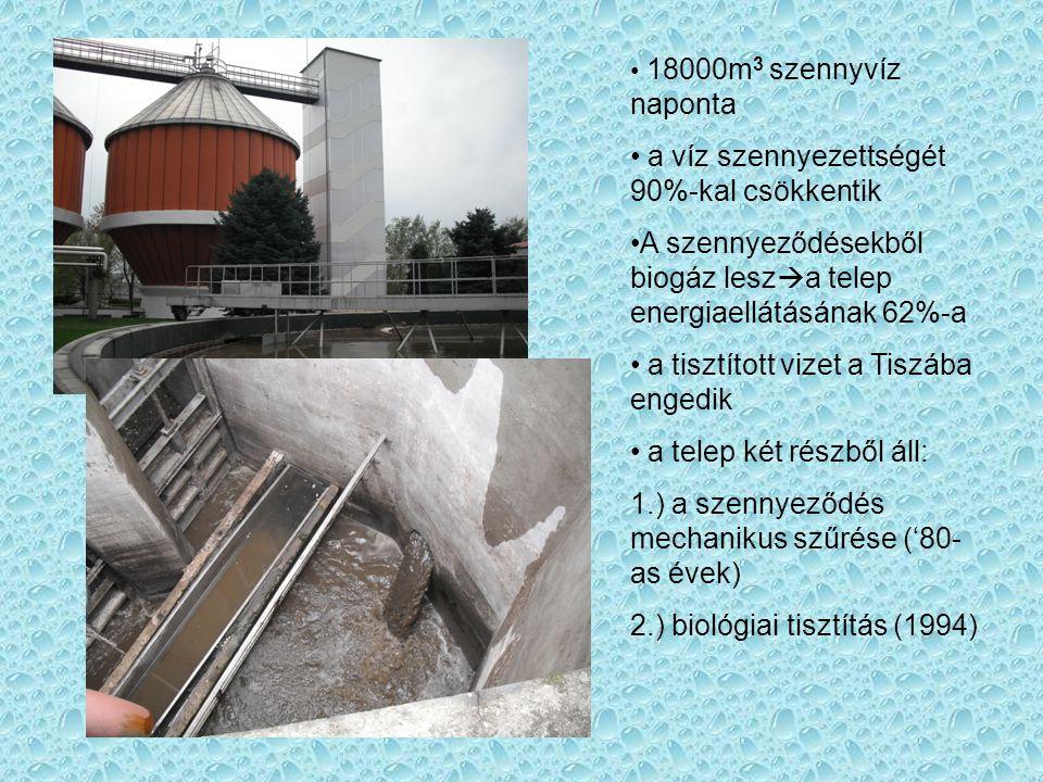 18000m 3 szennyvíz naponta a víz szennyezettségét 90%-kal csökkentik A szennyeződésekből biogáz lesz  a telep energiaellátásának 62%-a a tisztított vizet a Tiszába engedik a telep két részből áll: 1.) a szennyeződés mechanikus szűrése ('80- as évek) 2.) biológiai tisztítás (1994)