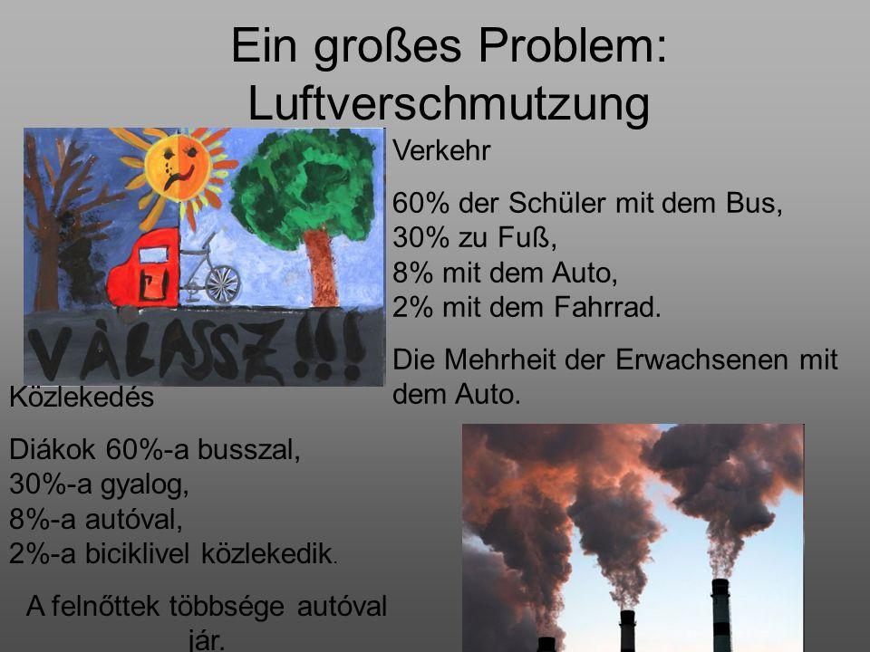 Ein großes Problem: Luftverschmutzung Közlekedés Diákok 60%-a busszal, 30%-a gyalog, 8%-a autóval, 2%-a biciklivel közlekedik. A felnőttek többsége au