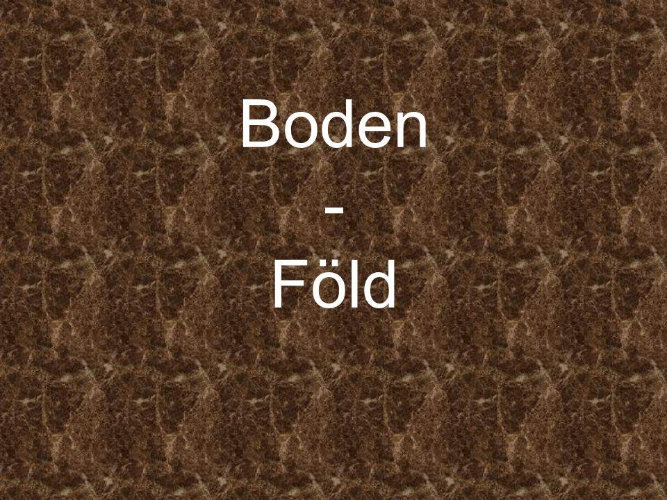 Boden - Föld