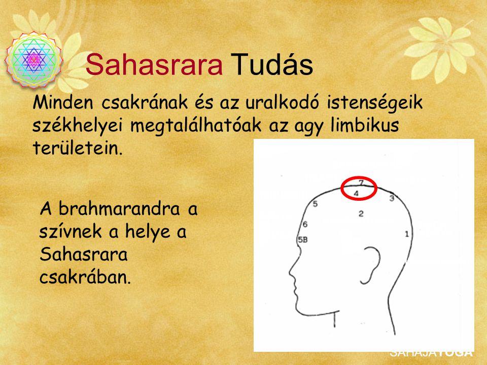 SAHAJAYOGA Minden csakrának és az uralkodó istenségeik székhelyei megtalálhatóak az agy limbikus területein. A brahmarandra a szívnek a helye a Sahasr