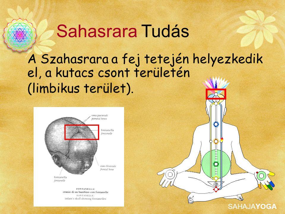 SAHAJAYOGA A Szahasrara a fej tetején helyezkedik el, a kutacs csont területén (limbikus terület). Sahasrara Tudás