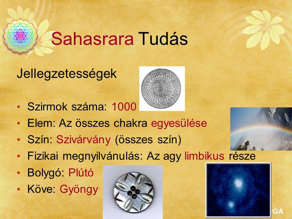 SAHAJAYOGA Sahasrara Tudás Jellegzetességek Szirmok száma: 1000 Elem: Az összes chakra egyesülése Szín: Szivárvány (összes szín) Fizikai megnyilvánulá