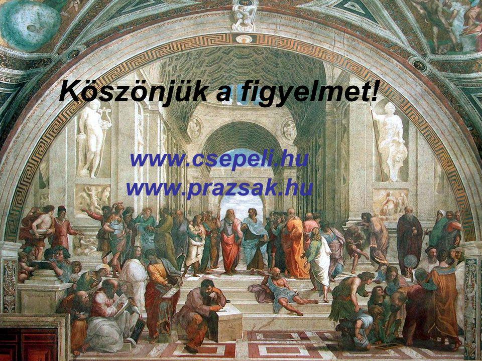 Köszönjük a figyelmet! www.csepeli.hu www.prazsak.hu
