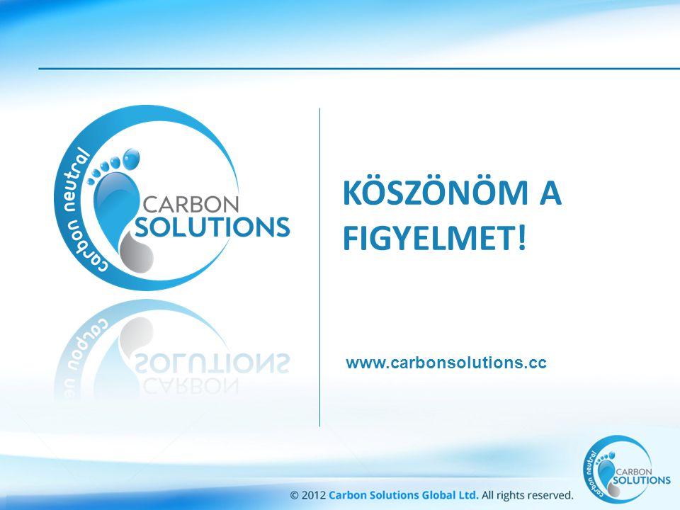 KÖSZÖNÖM A FIGYELMET! www.carbonsolutions.cc