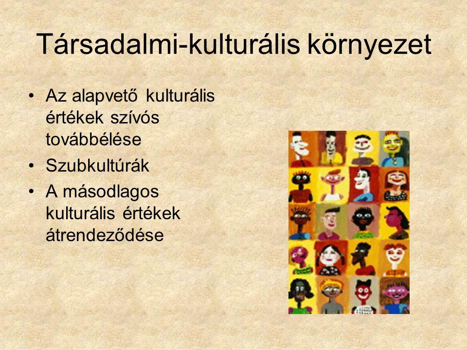 Társadalmi-kulturális környezet Az alapvető kulturális értékek szívós továbbélése Szubkultúrák A másodlagos kulturális értékek átrendeződése