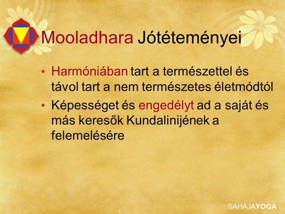 SAHAJAYOGA Mooladhara Jótéteményei Harmóniában tart a természettel és távol tart a nem természetes életmódtól Képességet és engedélyt ad a saját és má