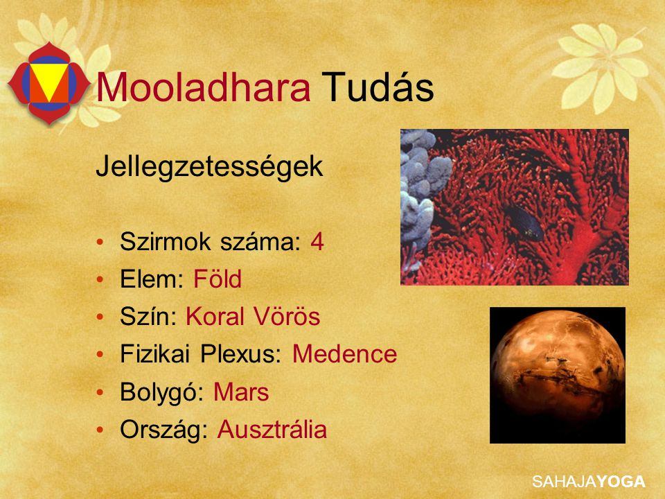 SAHAJAYOGA Jellegzetességek Szirmok száma: 4 Elem: Föld Szín: Koral Vörös Fizikai Plexus: Medence Bolygó: Mars Ország: Ausztrália Mooladhara Tudás
