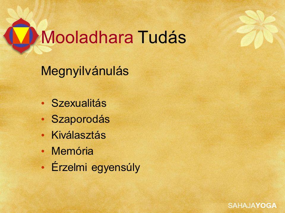 SAHAJAYOGA Mooladhara Tudás A tisztaság és ártatlanság isteni megnyilvánulása az alapja az egész finomrendszernek.
