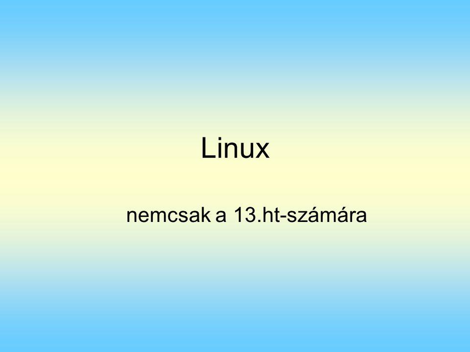 Linux nemcsak a 13.ht-számára