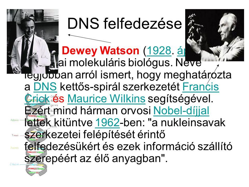 DNS felfedezése James Dewey Watson (1928. április 6 - ) amerikai molekuláris biológus. Neve legjobban arról ismert, hogy meghatározta a DNS kettős-spi