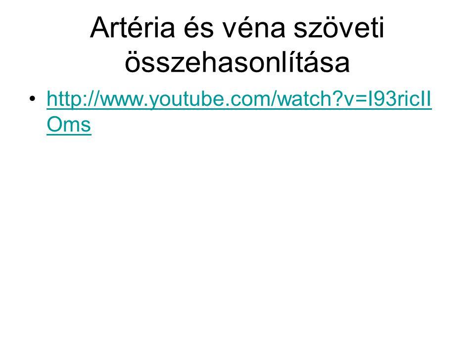 Artéria és véna szöveti összehasonlítása http://www.youtube.com/watch?v=I93ricII Omshttp://www.youtube.com/watch?v=I93ricII Oms