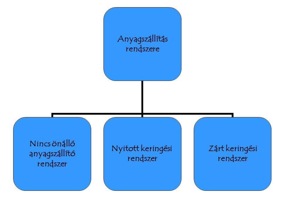 Anyagszállítás rendszere Nincs önálló anyagszállító rendszer Nyitott keringési rendszer Zárt keringési rendszer