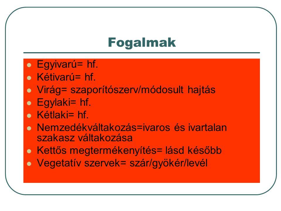 Ivaros ivartalan szaporodás előnyei-hátrányai Ivartalan gyors Nem tud alkalmazkodni Ivaros lassúalkalmazkodó