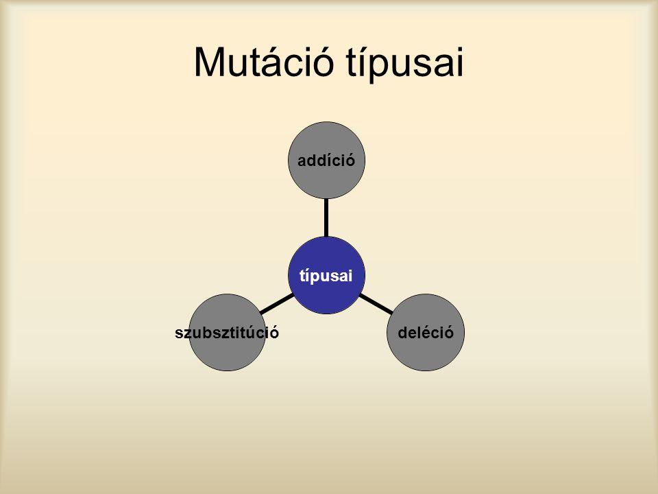 Mutáció típusai típusai addíciódeléciószubsztitúció