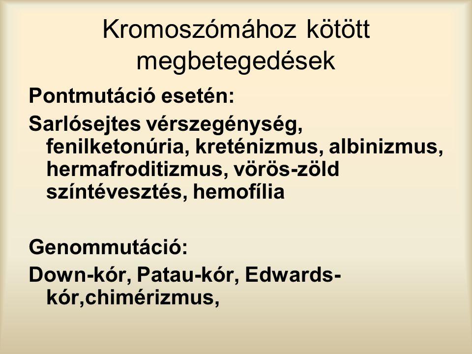 Kromoszómához kötött megbetegedések Pontmutáció esetén: Sarlósejtes vérszegénység, fenilketonúria, kreténizmus, albinizmus, hermafroditizmus, vörös-zö