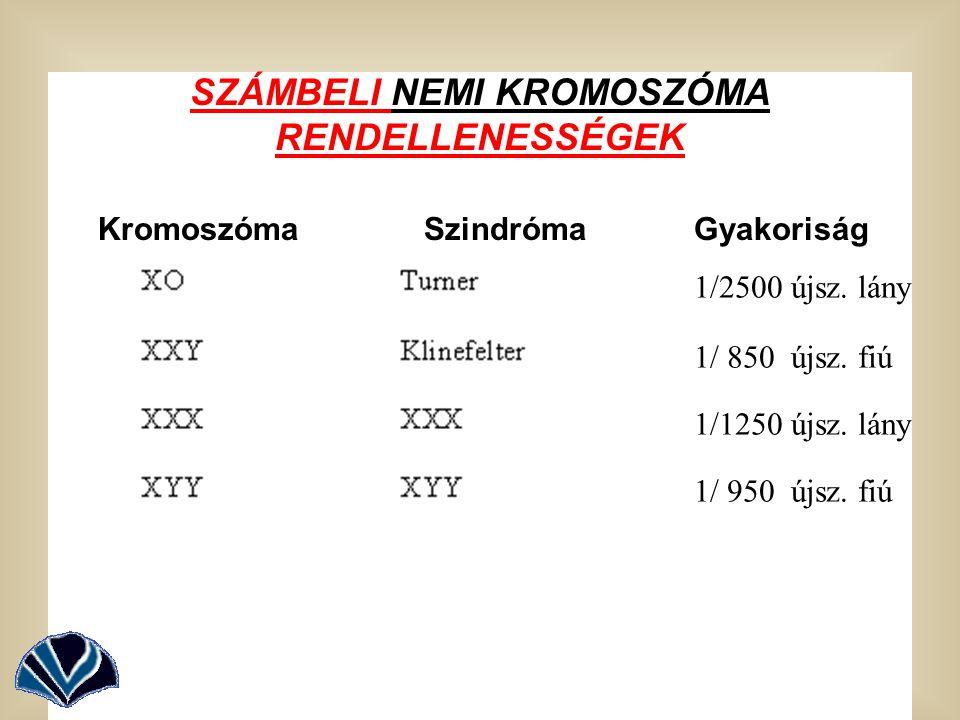 SZÁMBELI NEMI KROMOSZÓMA RENDELLENESSÉGEK Kromoszóma Szindróma Gyakoriság 1/2500 újsz. lány 1/ 850 újsz. fiú 1/1250 újsz. lány 1/ 950 újsz. fiú