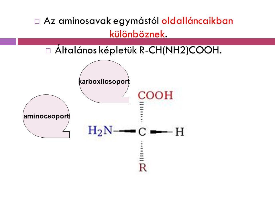  Az aminosavak egymástól oldalláncaikban különböznek.  Általános képletük R-CH(NH2)COOH. aminocsoport karboxilcsoport
