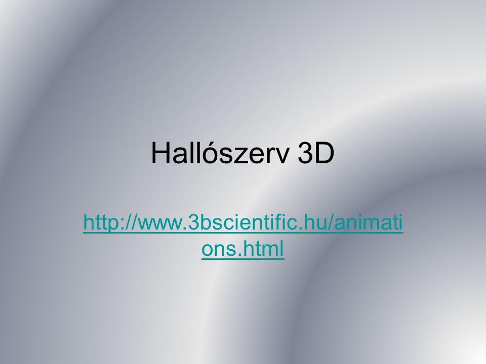 Hallószerv 3D http://www.3bscientific.hu/animati ons.html