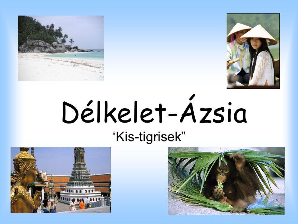 Malajzia * Terület: 329 750 km² * Népesség: 25 720 000 fő * Népsűrűség: 78 fő/km² * GDP: 271,2 milliárd dollár * Fővárosa: Kuala Lumpur * Határai: * Északról a Dél-Kínai-tenger,délről, keletről és nyugatról Indonézia határolja.