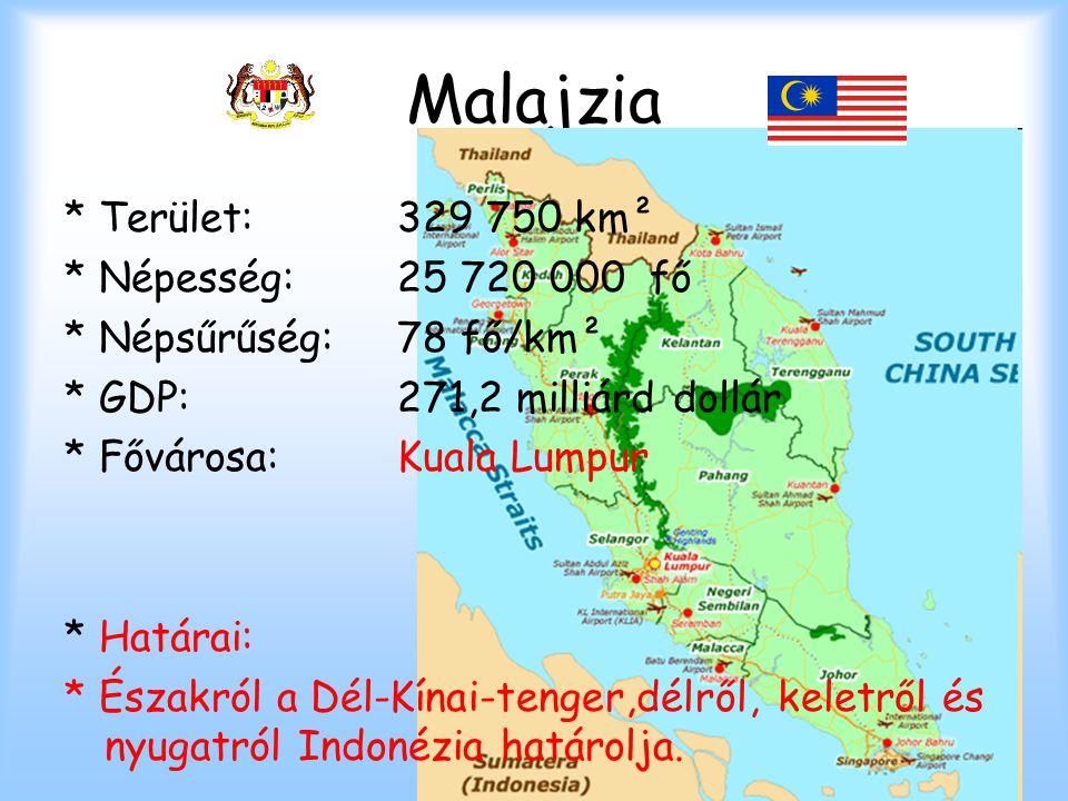 Malajzia * Terület: 329 750 km² * Népesség: 25 720 000 fő * Népsűrűség: 78 fő/km² * GDP: 271,2 milliárd dollár * Fővárosa: Kuala Lumpur * Határai: * É