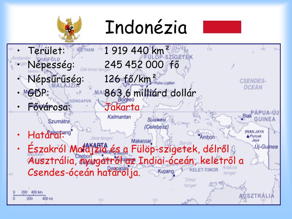 Indonézia Terület:1 919 440 km² Népesség:245 452 000 fő Népsűrűség:126 fő/km² GDP:863,6 milliárd dollár Fővárosa:Jakarta Határai: Északról Malajzia és