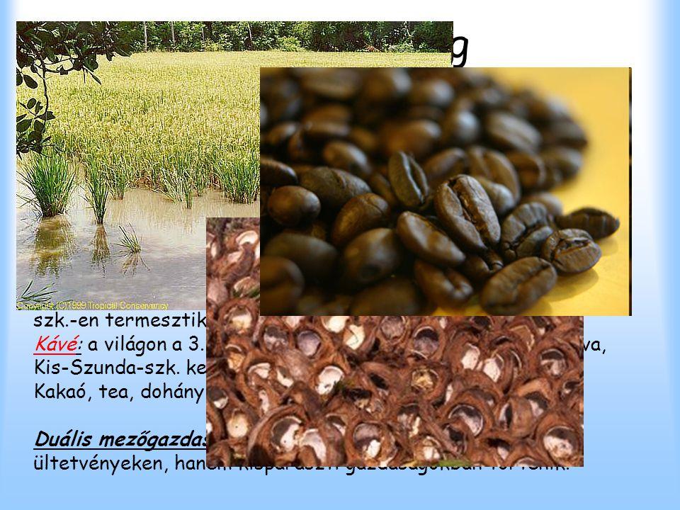 Mezőgazdaság Az összterület 8%-a szántó. Növénytermesztés: Rizs: a 3. legnagyobb rizstermelő ország. Az öntözéses rizstermesztés terjedt el, leginkább