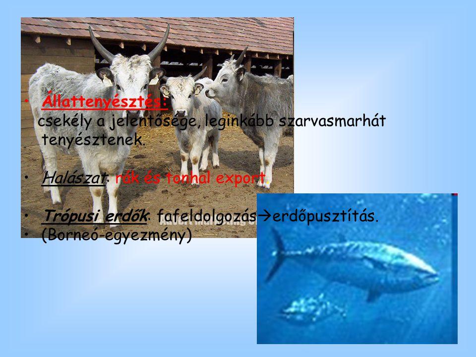 Állattenyésztés: csekély a jelentősége, leginkább szarvasmarhát tenyésztenek. Halászat: rák és tonhal export. Trópusi erdők: fafeldolgozás  erdőpuszt