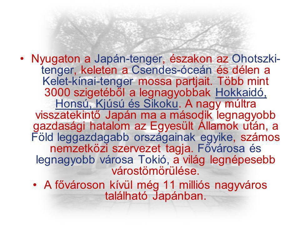 Nyugaton a Japán-tenger, északon az Ohotszki- tenger, keleten a Csendes-óceán és délen a Kelet-kínai-tenger mossa partjait. Több mint 3000 szigetéből