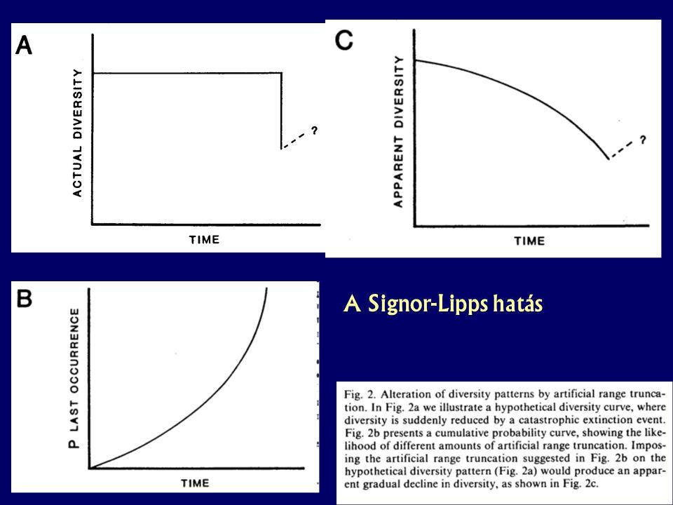 Paleobiológia speci – 2. hét A Signor-Lipps hatás