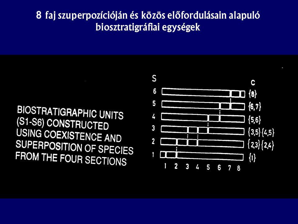 8 faj szuperpozícióján és közös előfordulásain alapuló biosztratigráfiai egységek