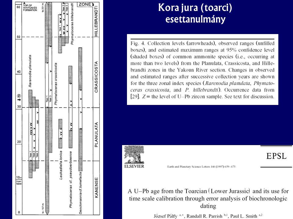 Kora jura (toarci) esettanulmány