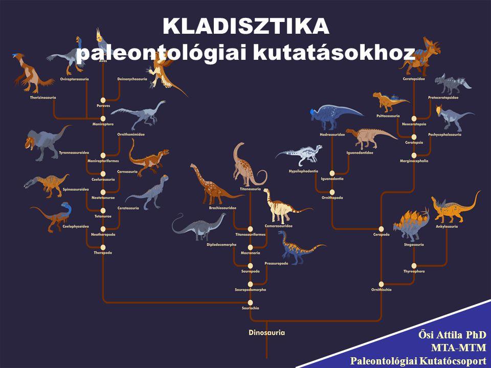 Ősi Attila PhD MTA-MTM Paleontológiai Kutatócsoport KLADISZTIKA paleontológiai kutatásokhoz