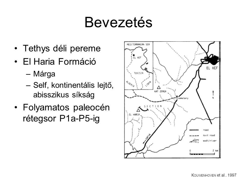Bevezetés Tethys déli pereme El Haria Formáció –Márga –Self, kontinentális lejtő, abisszikus síkság Folyamatos paleocén rétegsor P1a-P5-ig K OUWENHOVEN et al., 1997
