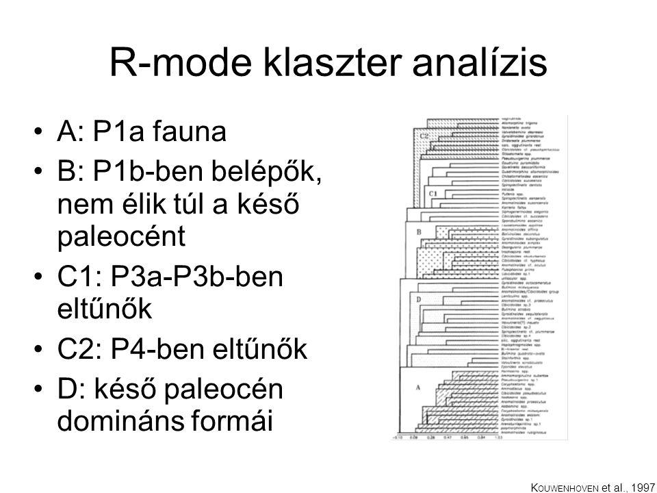 R-mode klaszter analízis A: P1a fauna B: P1b-ben belépők, nem élik túl a késő paleocént C1: P3a-P3b-ben eltűnők C2: P4-ben eltűnők D: késő paleocén domináns formái K OUWENHOVEN et al., 1997