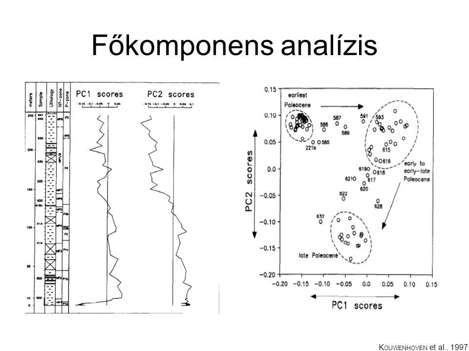 Főkomponens analízis K OUWENHOVEN et al., 1997
