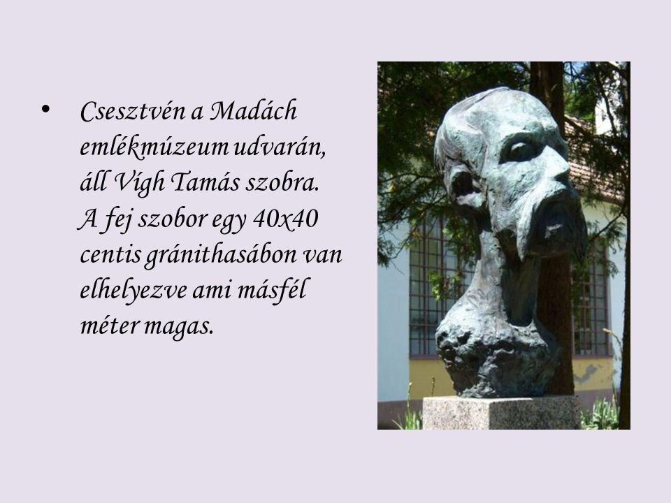Csesztvén a Madách emlékmúzeum udvarán, áll Vígh Tamás szobra. A fej szobor egy 40x40 centis gránithasábon van elhelyezve ami másfél méter magas.
