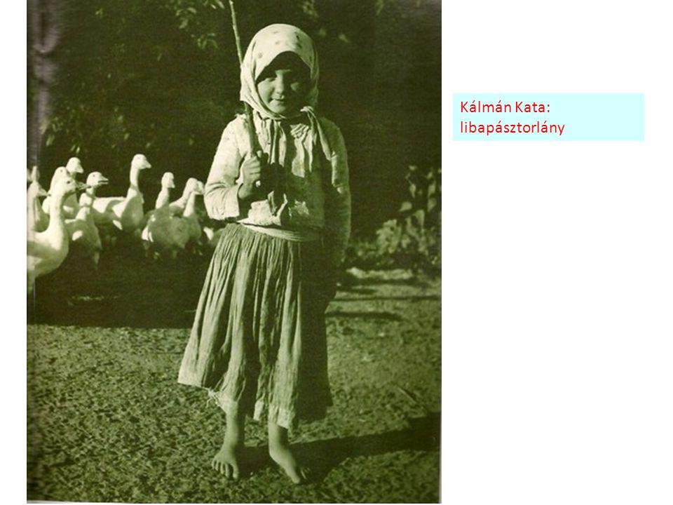 Kálmán Kata: libapásztorlány