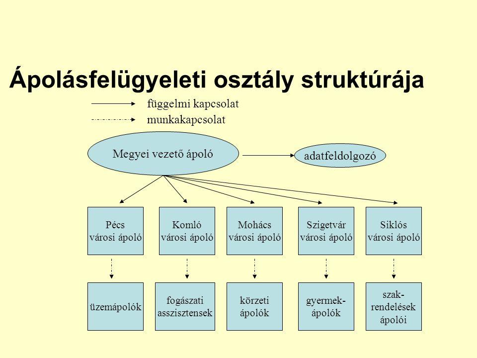 Ápolásfelügyeleti osztály struktúrája Megyei vezető ápoló adatfeldolgozó Pécs városi ápoló Komló városi ápoló Mohács városi ápoló Szigetvár városi ápo