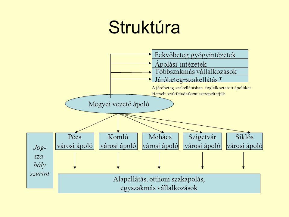 Struktúra Megyei vezető ápoló adatfeldolgozó Pécs városi ápoló Komló városi ápoló Mohács városi ápoló Szigetvár városi ápoló Siklós városi ápoló Kapcsolat rendszer szerint függelmi kapcsolat munkakapcsolat