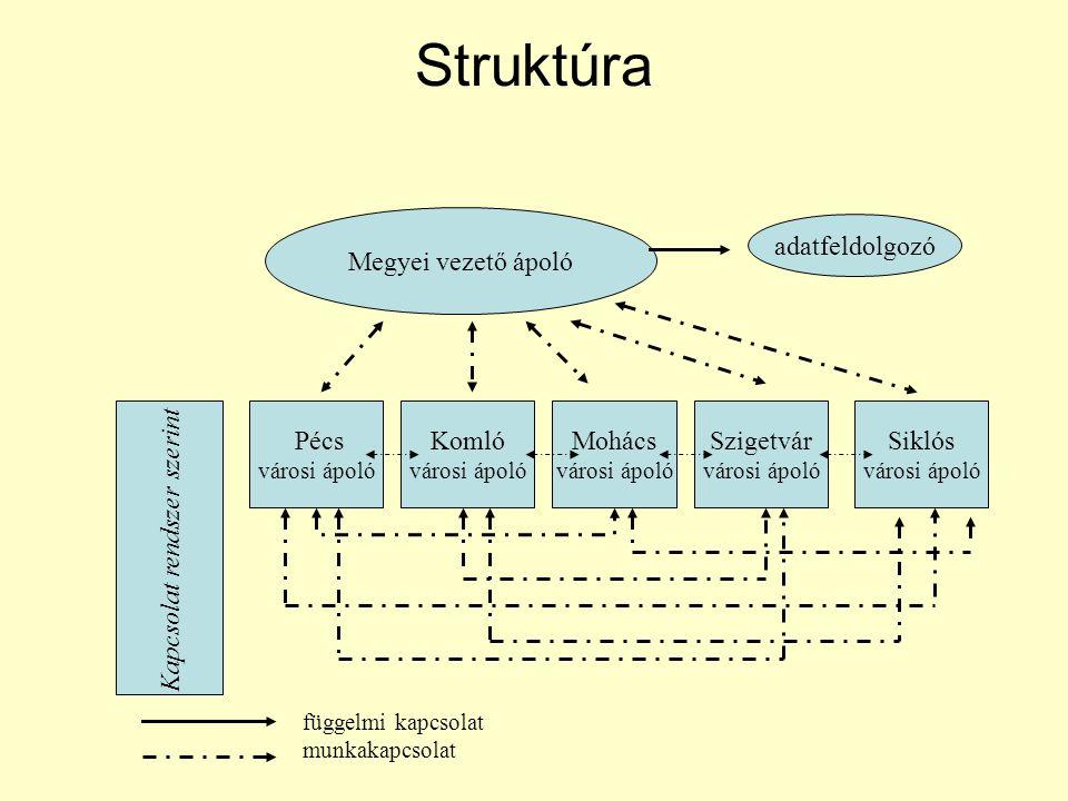 Struktúra Megyei vezető ápoló adatfeldolgozó Pécs városi ápoló Komló városi ápoló Mohács városi ápoló Szigetvár városi ápoló Siklós városi ápoló Kapcs