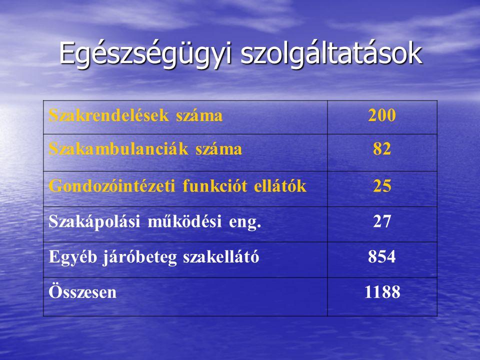 Egészségügyi szolgáltatások Szakrendelések száma200 Szakambulanciák száma82 Gondozóintézeti funkciót ellátók25 Szakápolási működési eng.27 Egyéb járóbeteg szakellátó854 Összesen1188