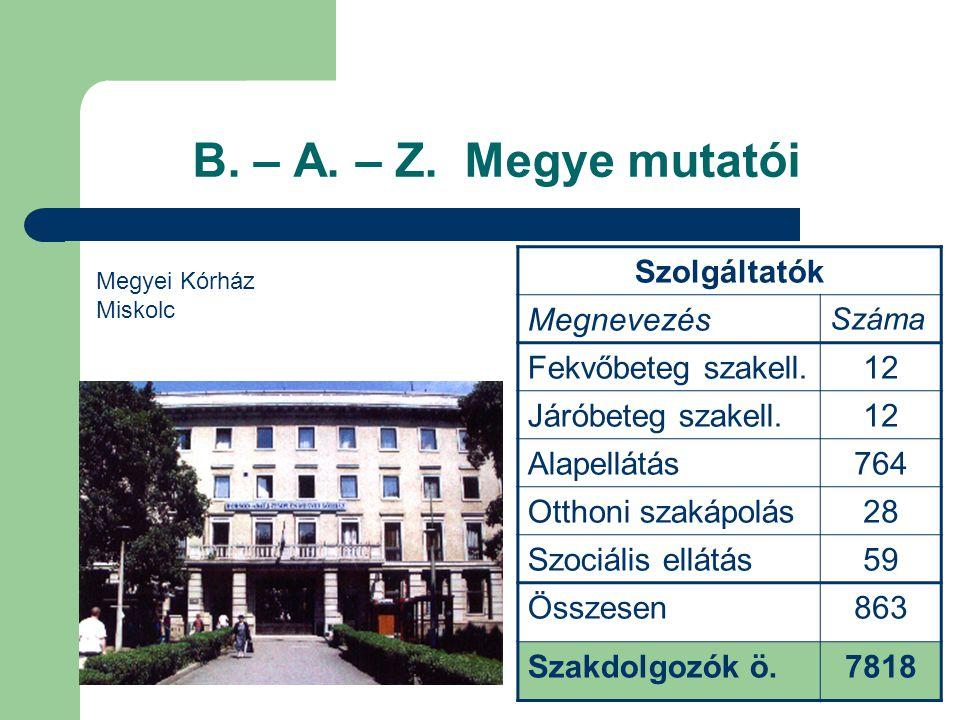 B. – A. – Z. Megye mutatói Szolgáltatók Megnevezés Száma Fekvőbeteg szakell.12 Járóbeteg szakell.12 Alapellátás764 Otthoni szakápolás28 Szociális ellá
