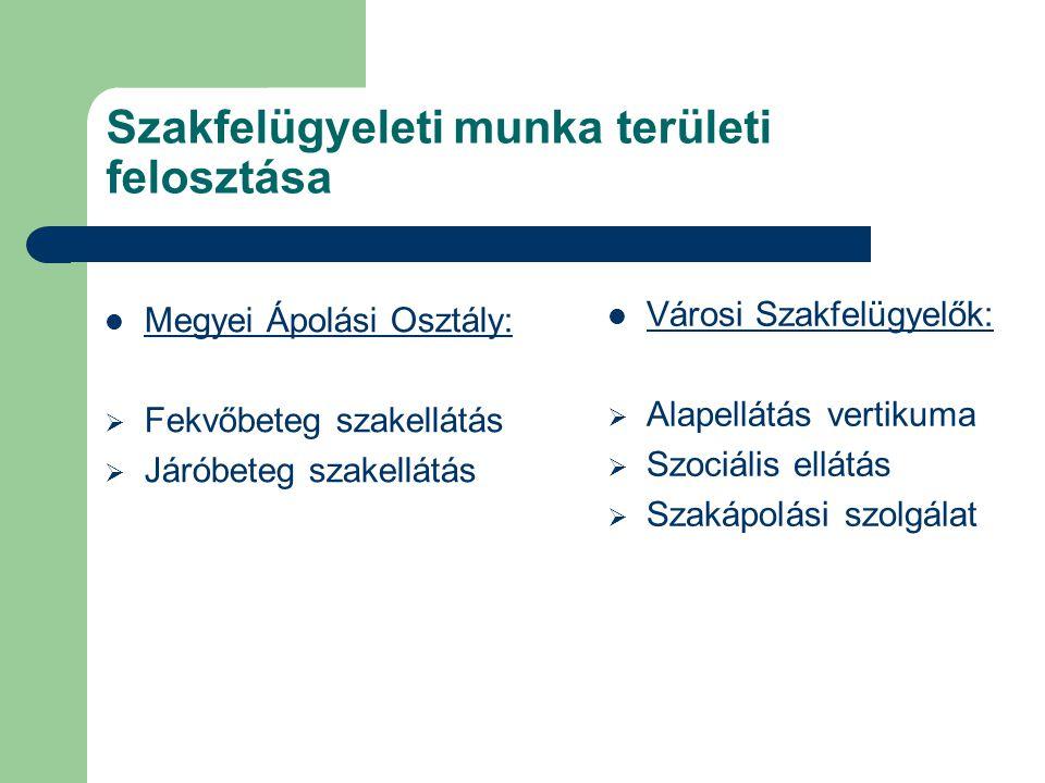 Szakfelügyeleti munka területi felosztása Megyei Ápolási Osztály:  Fekvőbeteg szakellátás  Járóbeteg szakellátás Városi Szakfelügyelők:  Alapellátá