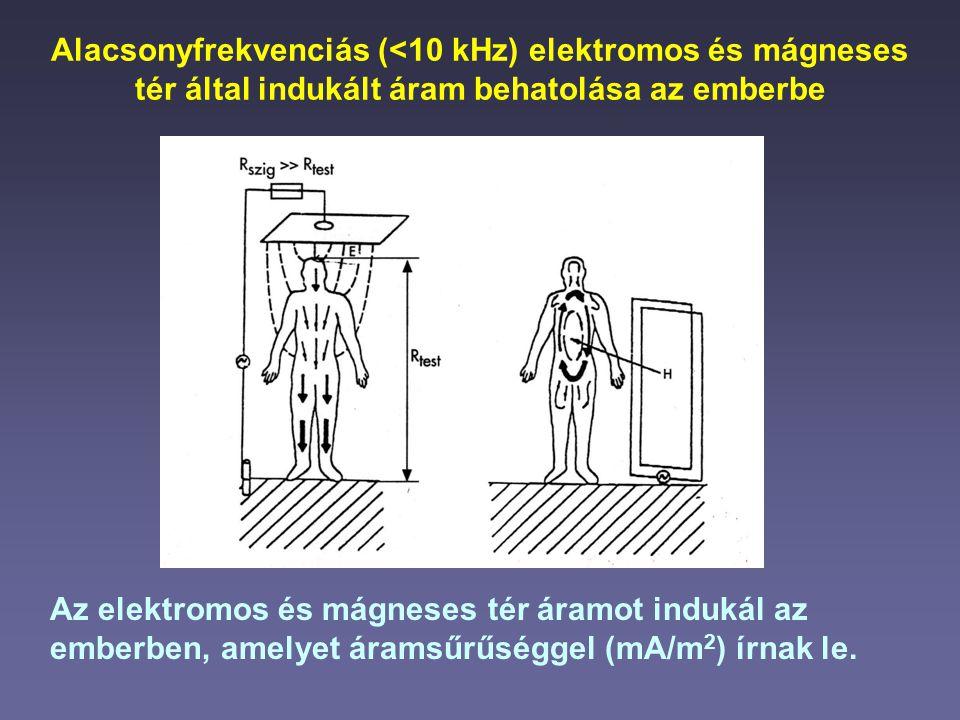 Alacsonyfrekvenciás (<10 kHz) elektromos és mágneses tér által indukált áram behatolása az emberbe Az elektromos és mágneses tér áramot indukál az emb